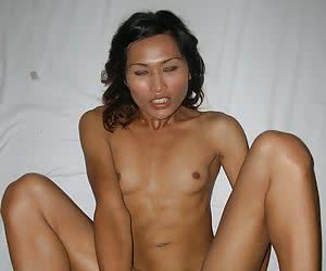Skinny amateur asian shemale showing her butt and having sex