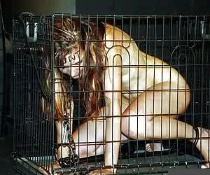 Enslaved And Dehumanized