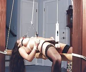THE UNIVERSE OF BDSM