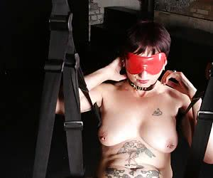 Suspended on a fucking swing, Elle has her Pet use tongues, fingers, vibrators and dildos to bring her to a screaming or
