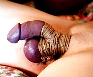 free pics cock and ball torture