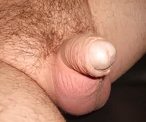 Humiliate My Small Penis series