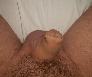 Small Hairy Cock gallery