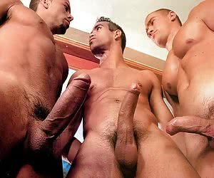 Hard Dick Pictures