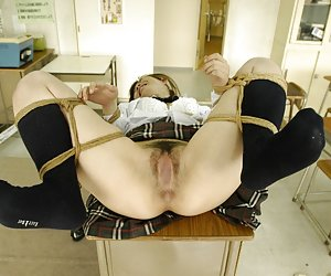 Submissive Sluts And Slaves